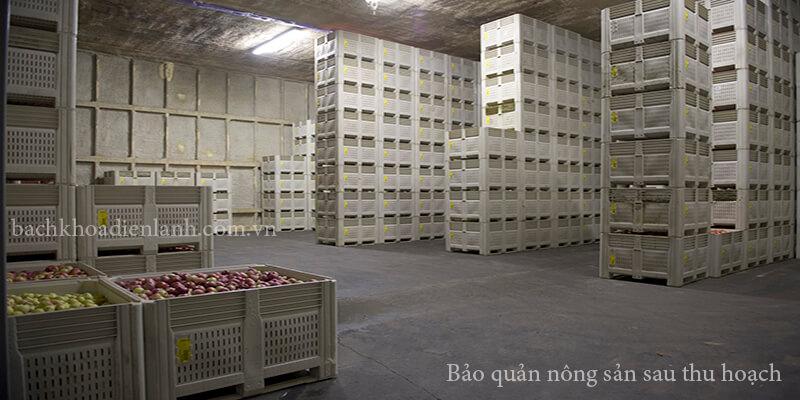 bảo quản nông sản sau thu hoạch