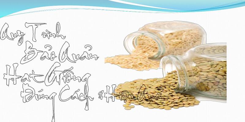 Quy trình bảo quản hạt giống
